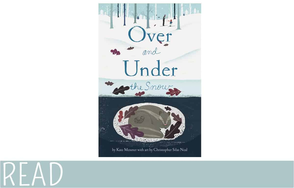 Kids-Book-Review-Over-Under-Snow