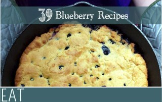 bcblueberries_recipe_ideas