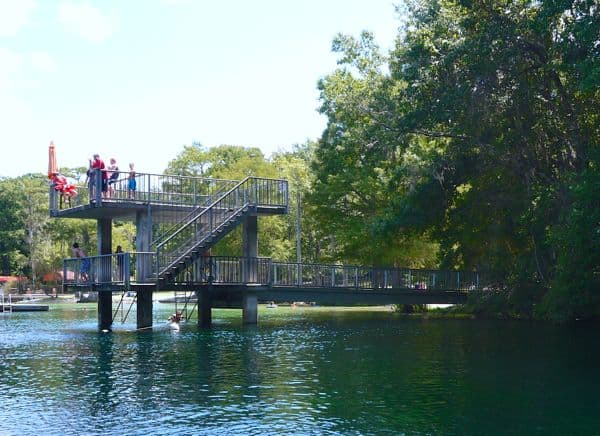 Tallahassee Day Trip to Wakulla Springs - EverythingMom