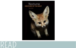 Kids Book Review Nocturne Creatures Night