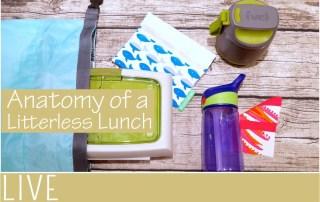 anatomy litterless lunch packing