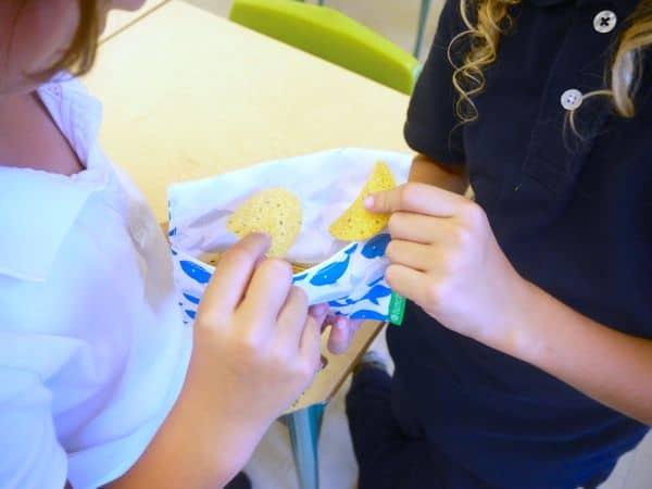 anatomy litterless lunch school snack2