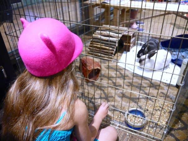 family travel Eaton Chelsea activity center bunnies