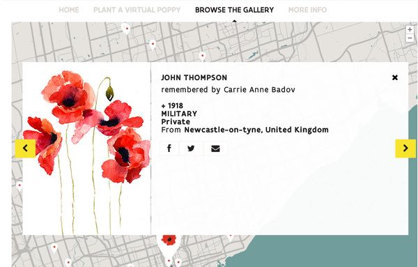 Remembrance Day Flanders Field Poppy