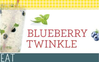 Drink Recipe Blueberry Twinkle Mocktail Book
