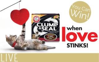 Arm Hammer Cat Litter Love Giveaway