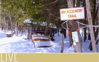 Winter Hibernot Horseshoe Resort Snowshoe Trail
