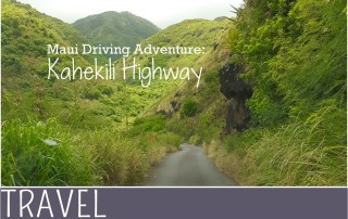 Family Travel Hawaii Maui Kahekill Highway roadtrip (2)
