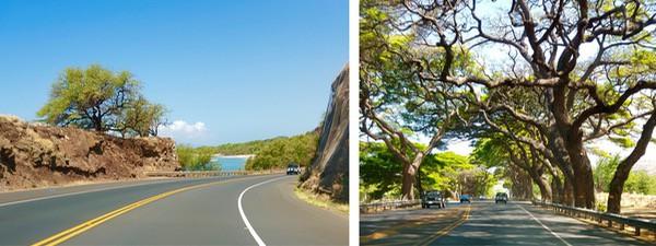 Family Travel Hawaii Maui Kahekill Highway13 (1)