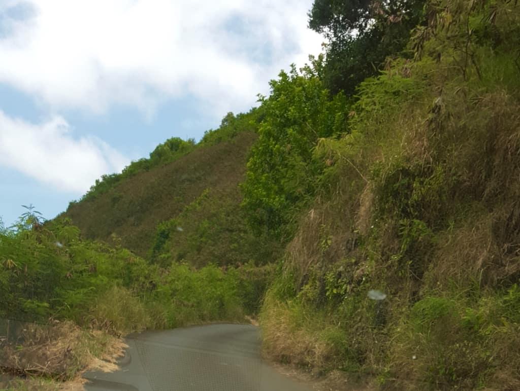 Family Travel Hawaii Maui Kahekill Highway3