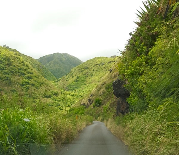 Family Travel Hawaii Maui Kahekill Highway5