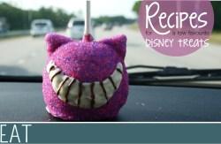 Family Travel Disney Food DIY Recipe Ideas (1)