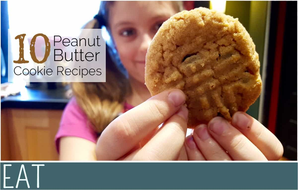 Peanut-Butter-Cookie-Recipes-for-PB-Fans