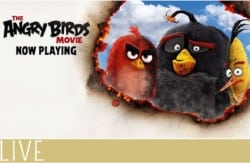 Angry-Birds-Movie-Review