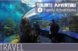 family-travel-toronto-Family-Attractions-Day-Trip