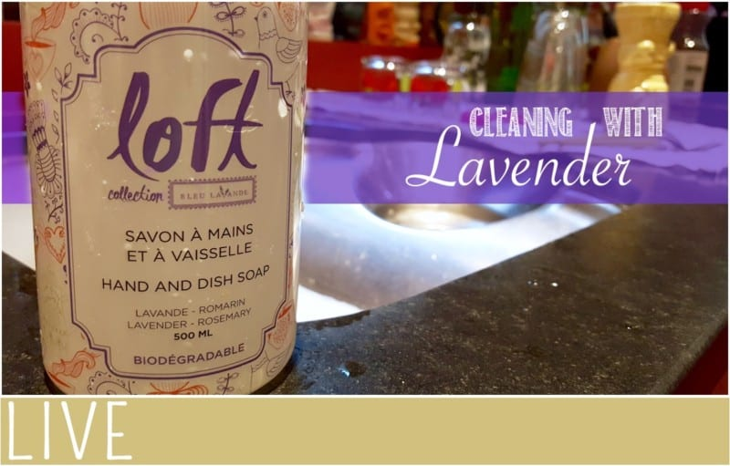 Cleaning with Lavender product shot