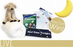 Goodnites Prize package image