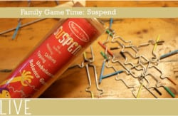 Family Game Time Blog Melissa Doug suspend review post image