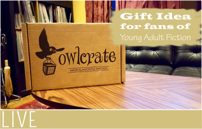 Owlcrate teen gift idea January unboxing (1)