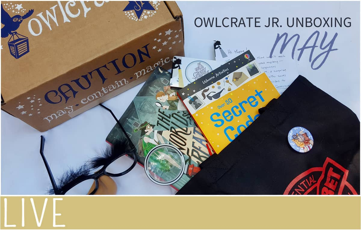 Owlcrate Jr. May items