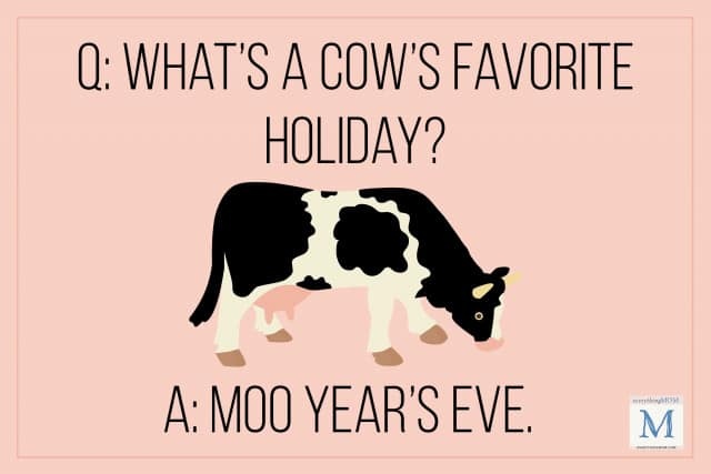 what's a cow's favorite holiday? riddle