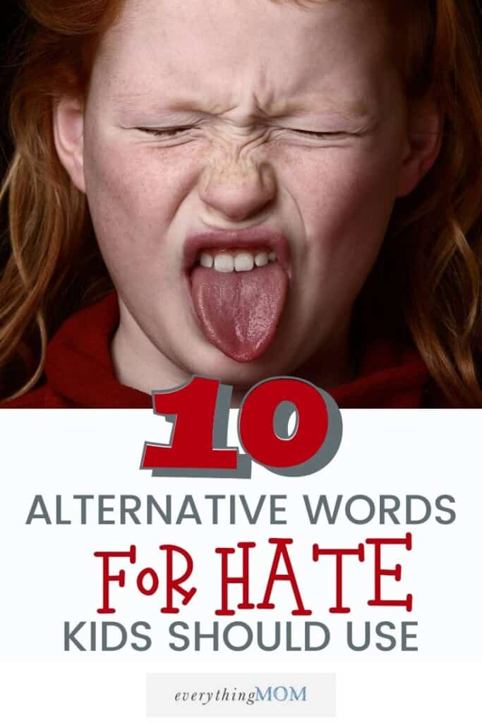 10 Alternative Words to Hate